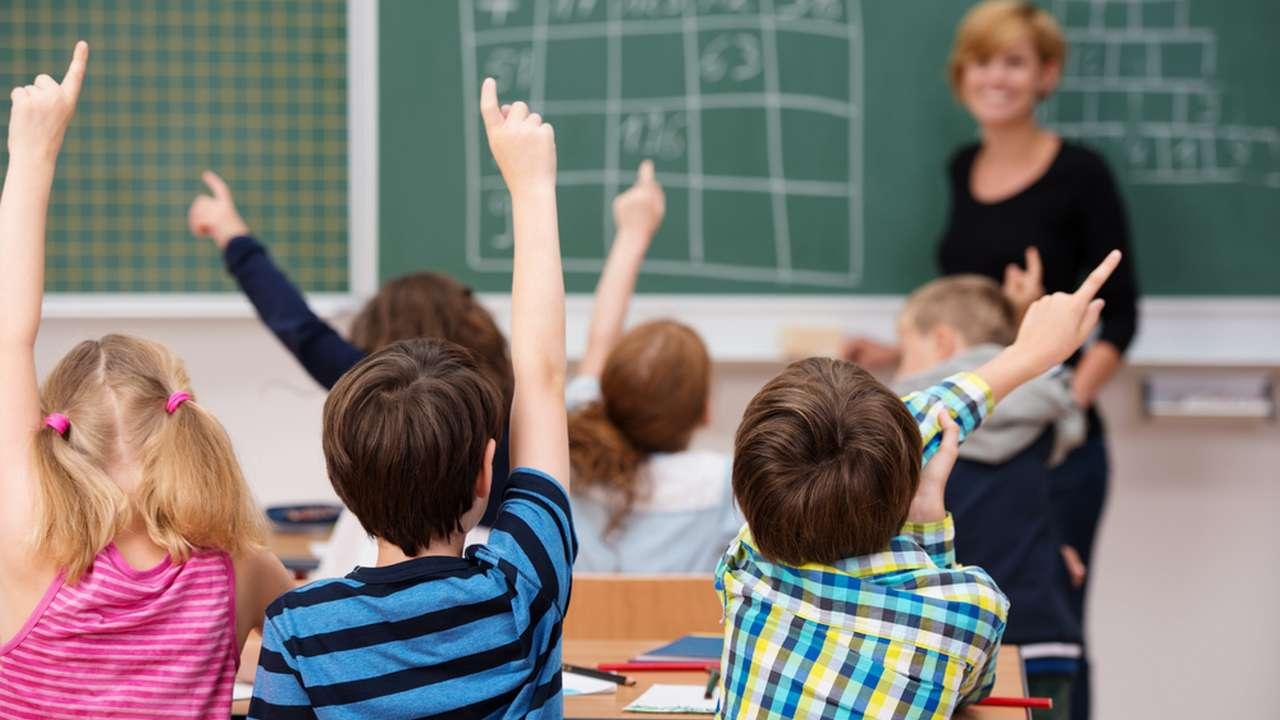 7 учебных программ для первоклассников: разбираем все плюсы и минусы -  Телеканал «О!»