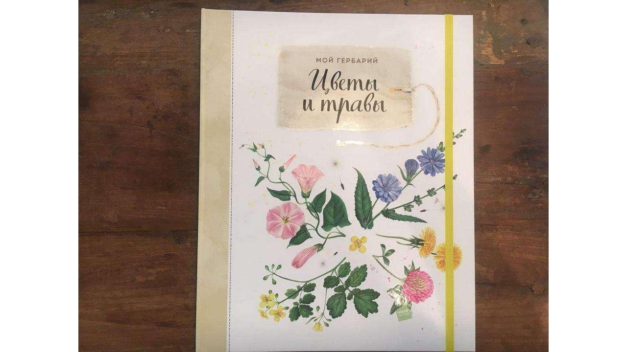 «Мой гербарий. Цветы итравы», Анна Васильева, Светлана Винникова